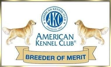 Verify at AKC